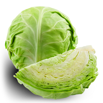 Cabbage-PNG-High-Quality-Image